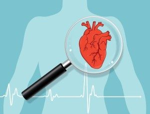 illustration of heart body with magnifier over heart