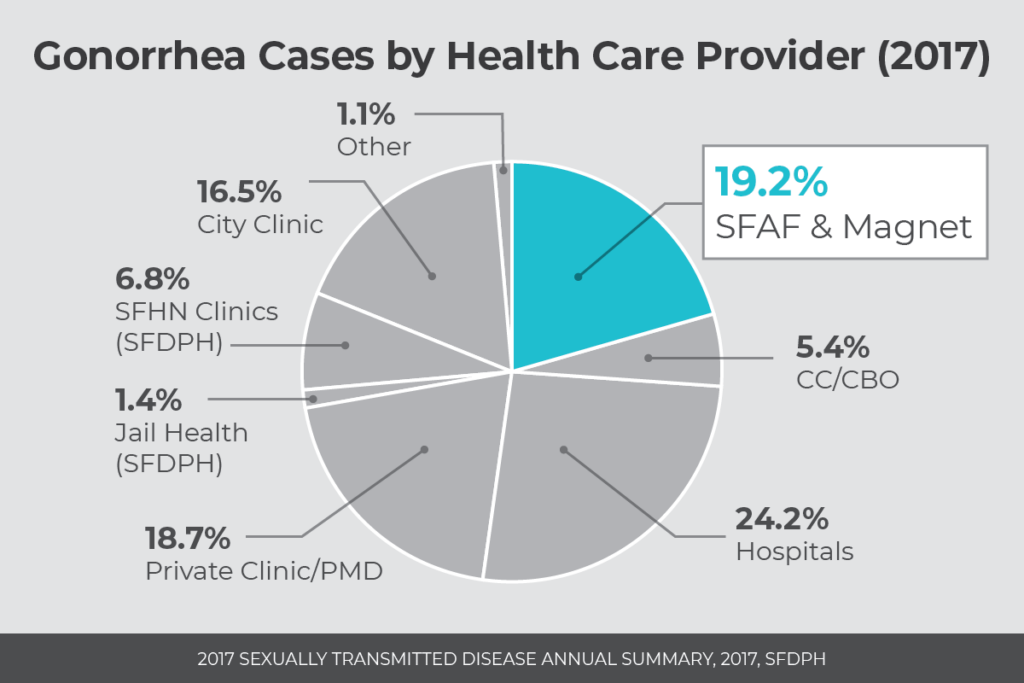 Gonorrhea cases by health care provider (2017)